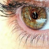 Уход за больными с поражениями глаз